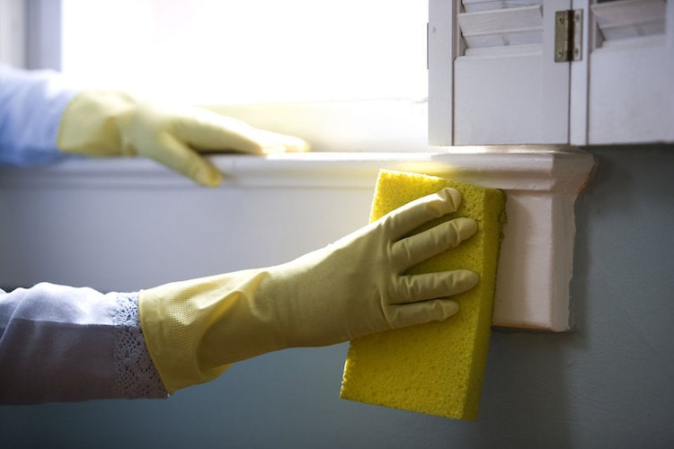 7 Must-Have Cleaning Tools Every Home Should Have