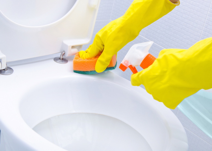 how-to-clean-toilet-bowl-ring