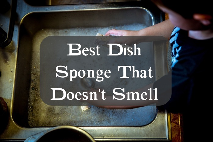 Best Dish Sponge That Doesn't Smell