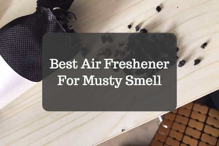Best Air Freshener For Musty Smell Homelization