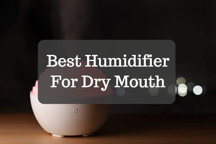 Best Humidifier For Dry Mouth