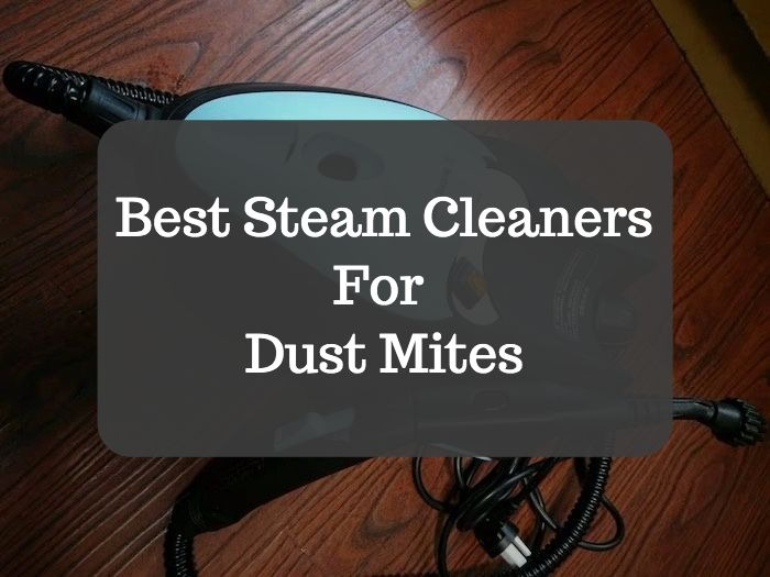 Best Steam Cleaner For Dust Mites