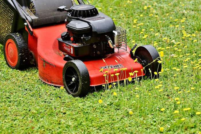 Best Lawn Mowers For Different Uses